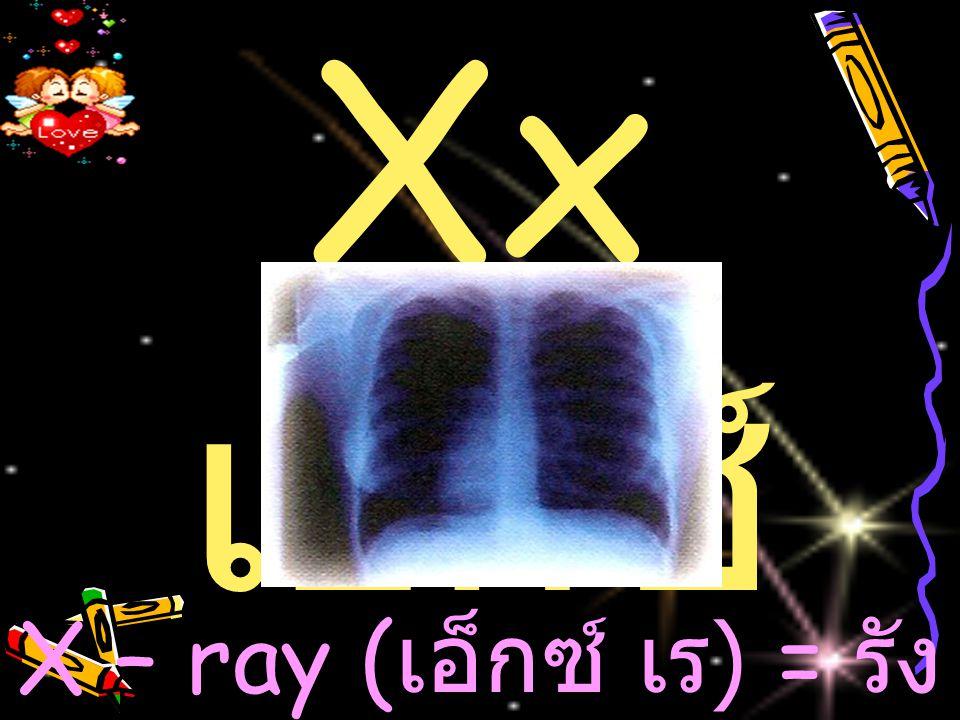 Xx เอ็กซ์ X – ray ( เอ็กซ์ เ ร ) = ร ัง สีเอ็กซ์