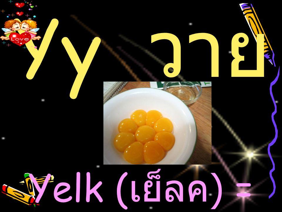 Yy ว าย Yelk ( เย็ลค ) = ไข่แดง