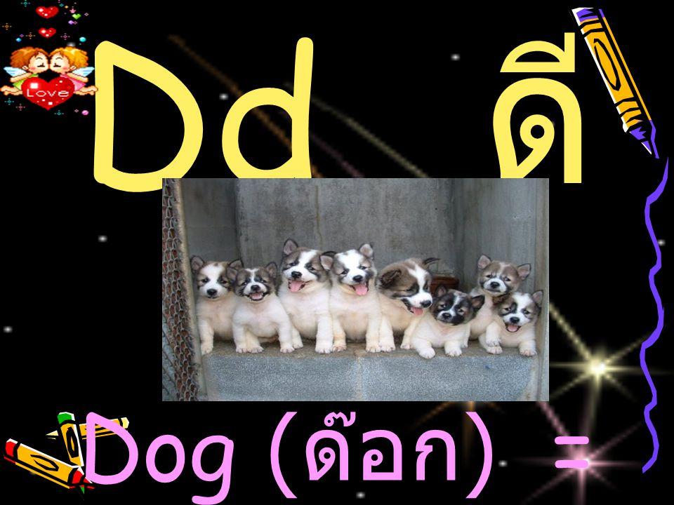Dd ดี Dog ( ด๊อก ) = สุนัข