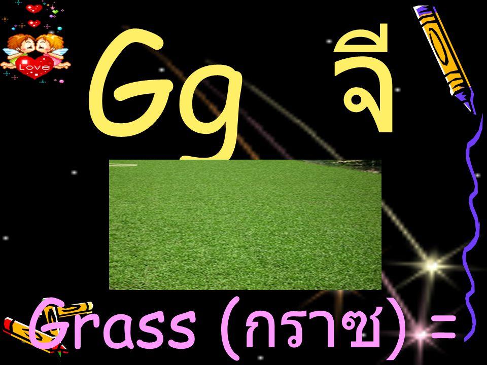 Gg จ ี Grass ( กราซ ) = หญ้า