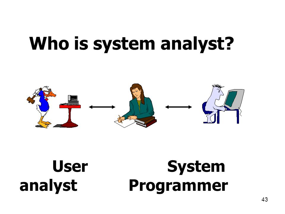 43 Who is system analyst? User System analyst Programmer