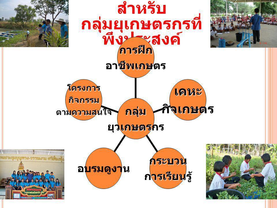 กิจกรรมหลัก สำหรับ กลุ่มยุเกษตรกรที่ พึงประสงค์กลุ่มยุวเกษตรกร การฝึก อาชีพ เกษตร เคหะกิจเกษตร กระบวนการเรียนรู้ อบรมดู งาน โครงการกิจกรรม ตามความ สนใ