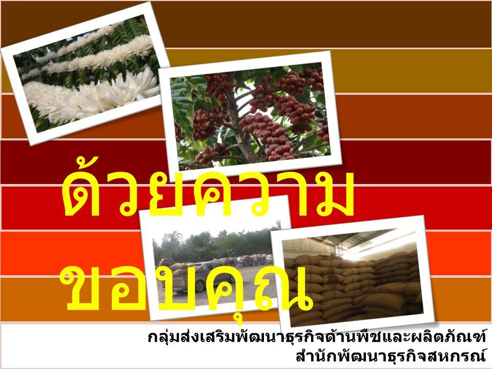 ด้วยความ ขอบคุณ กลุ่มส่งเสริมพัฒนาธุรกิจด้านพืชและผลิตภัณฑ์ สำนักพัฒนาธุรกิจสหกรณ์