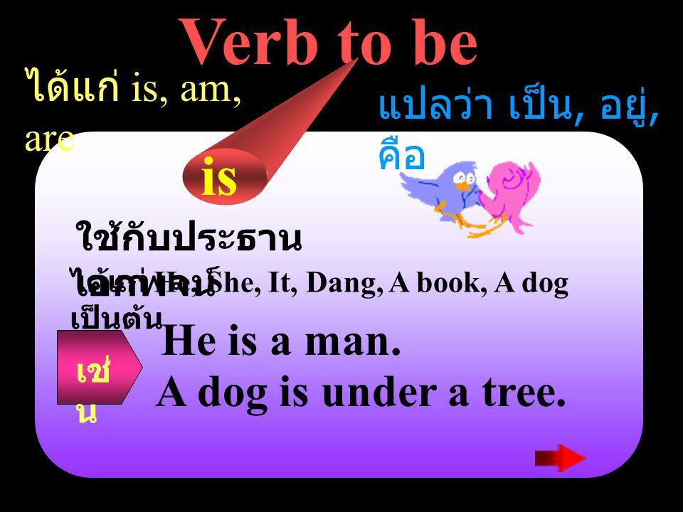Verb to be ได้แก่ is, am, are แปลว่า เป็น, อยู่, คือ ใช้กับประธาน เอกพจน์ ได้แก่ He, She, It, Dang, A book, A dog เป็นต้น is He is a man.