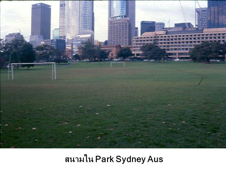 สนามใน Park Sydney Aus