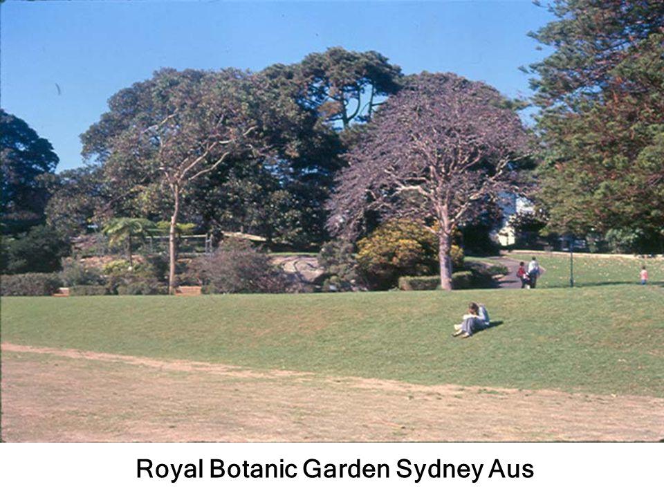 Royal Botanic Garden Sydney Aus