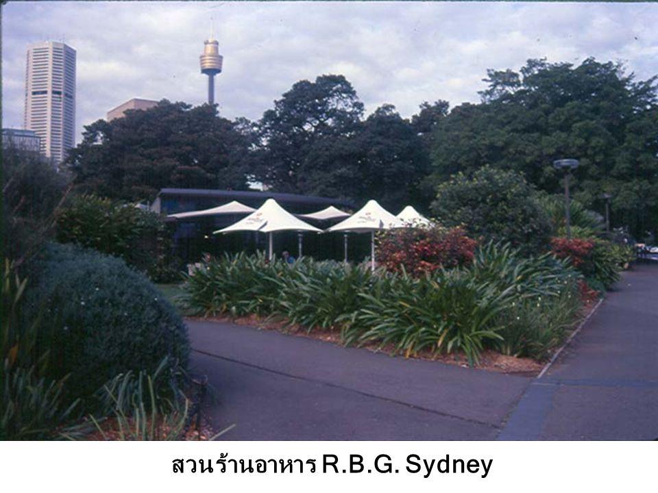สวนร้านอาหาร R.B.G. Sydney