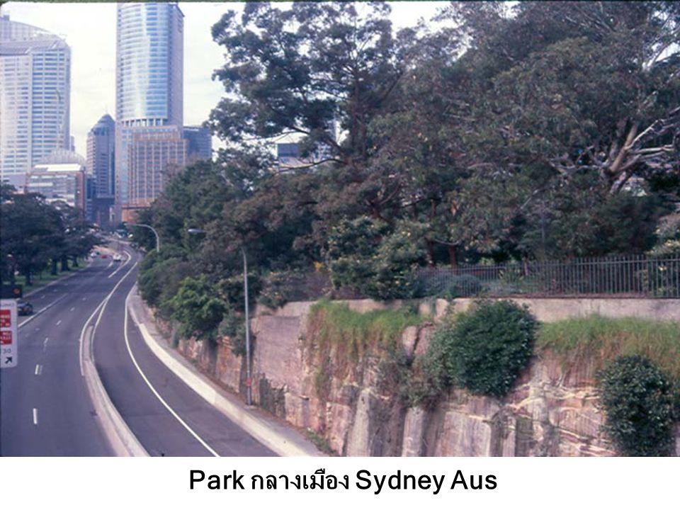 Park กลางเมือง Sydney Aus