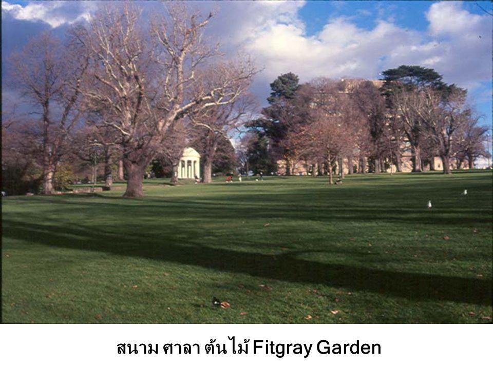 สนาม ศาลา ต้นไม้ Fitgray Garden