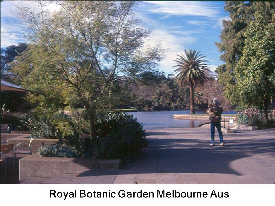 Royal Botanic Garden Melbourne Aus