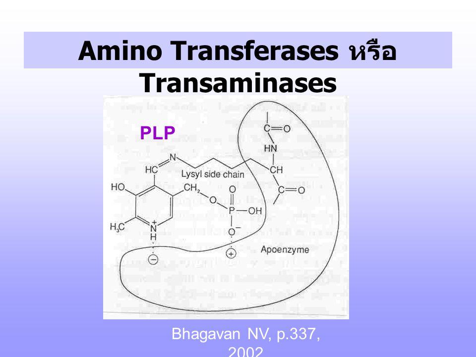 Amino Transferases หรือ Transaminases pyrido xal -P pyridoxam ine-P