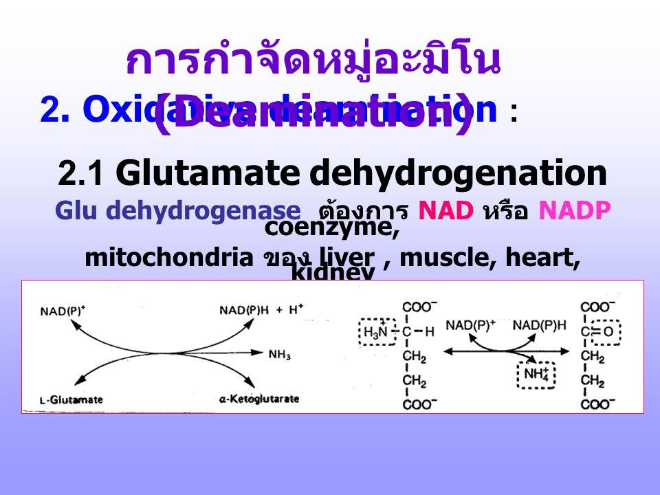 ตัวอย่างยาที่ออกฤทธิ์โดยการจับ กับ PLP Eflornithine, DFMO