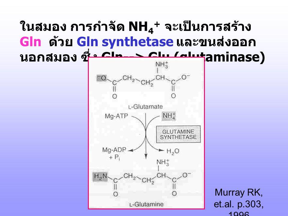 2. Oxidative deamination : 2.1 Glutamate dehydrogenation Glu dehydrogenase ต้องการ NAD หรือ NADP coenzyme, mitochondria ของ liver, muscle, heart, kidn