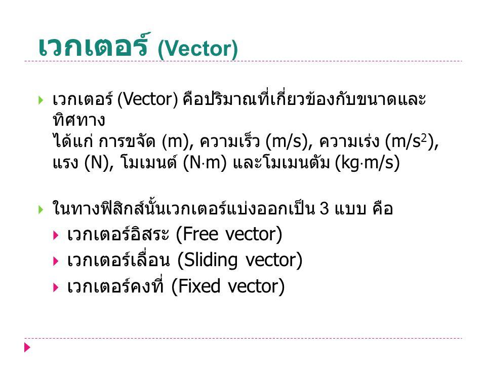 เวกเตอร์ (Vector)  เวกเตอร์ (Vector) คือปริมาณที่เกี่ยวข้องกับขนาดและ ทิศทาง ได้แก่ การขจัด (m), ความเร็ว (m/s), ความเร่ง (m/s 2 ), แรง (N), โมเมนต์