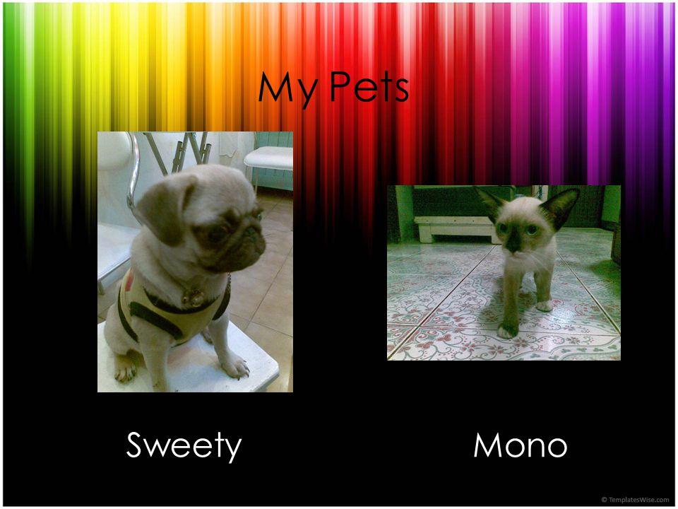 My Pets SweetyMono