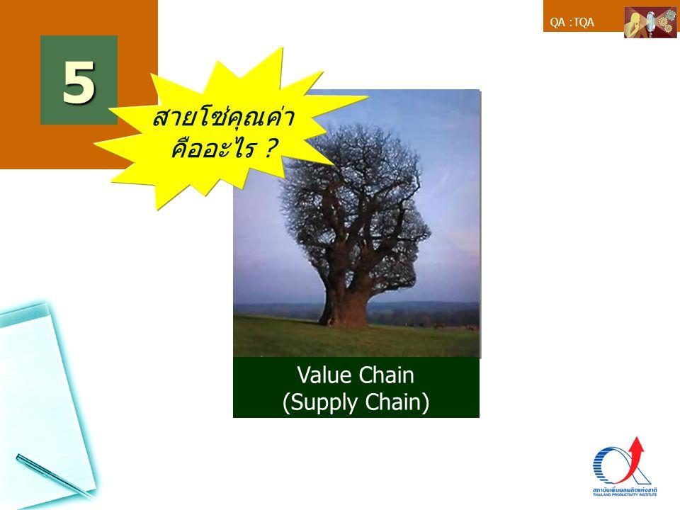 QA :TQA Value Chain (Supply Chain) 5 สายโซ่คุณค่า คืออะไร ?