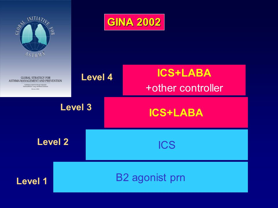 High dose ICS +other controller B2 agonist prn Level 1 ICS high dose ICS ICS+LABA +other controller Level 2 Level 3 Level 4 ICS+LABA GINA1995 GINA 200