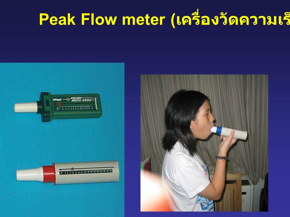 Peak Flow meter ( เครื่องวัดความเร็วสูงสุด )