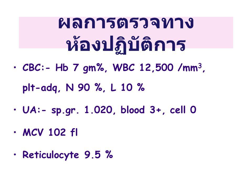 ผลการตรวจทาง ห้องปฏิบัติการ •CBC:- Hb 7 gm%, WBC 12,500 /mm 3, plt-adq, N 90 %, L 10 % •UA:- sp.gr. 1.020, blood 3+, cell 0 •MCV 102 fl •Reticulocyte