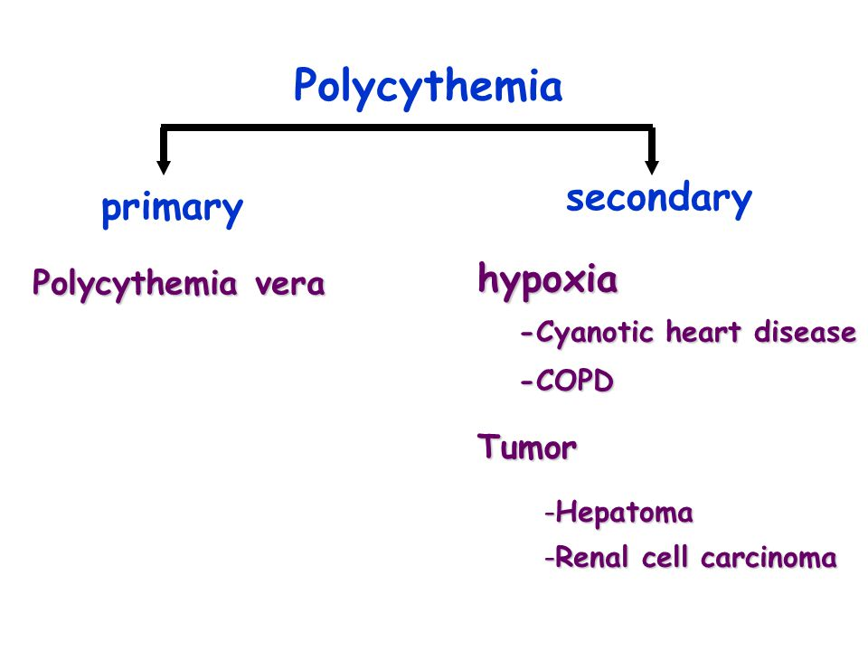 Polycythemia Polycythemia vera primary secondary hypoxia -Cyanotic heart disease -COPD Tumor -Hepatoma -Renal cell carcinoma
