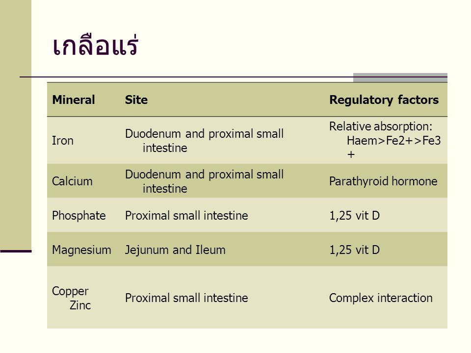 เกลือแร่ MineralSiteRegulatory factors Iron Duodenum and proximal small intestine Relative absorption: Haem>Fe2+>Fe3 + Calcium Duodenum and proximal small intestine Parathyroid hormone PhosphateProximal small intestine1,25 vit D MagnesiumJejunum and Ileum1,25 vit D Copper Zinc Proximal small intestineComplex interaction