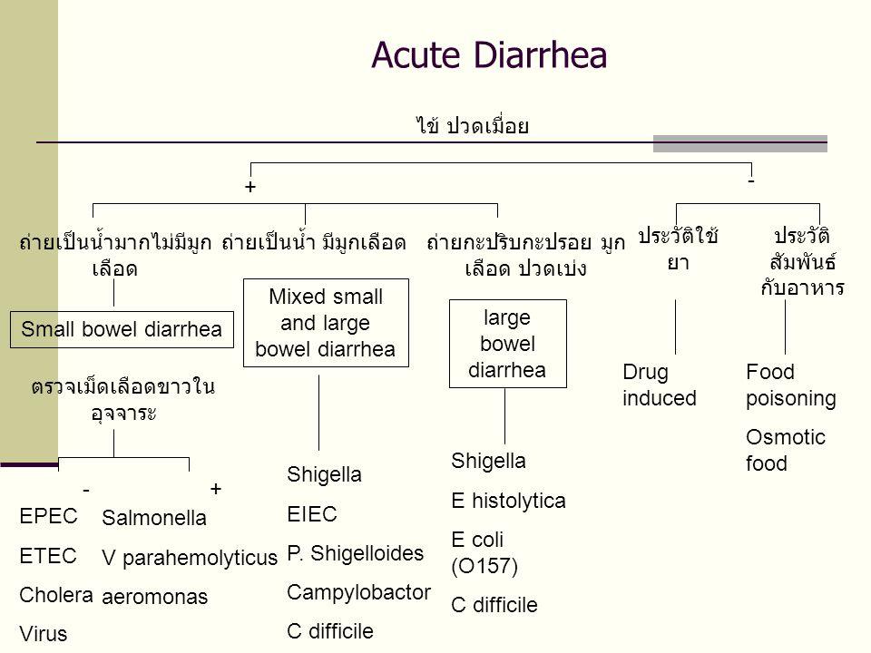 Acute Diarrhea ไข้ ปวดเมื่อย + - ถ่ายเป็นน้ำมากไม่มีมูก เลือด Small bowel diarrhea ตรวจเม็ดเลือดขาวใน อุจจาระ +- EPEC ETEC Cholera Virus Salmonella V parahemolyticus aeromonas ถ่ายเป็นน้ำ มีมูกเลือด Mixed small and large bowel diarrhea Shigella EIEC P.