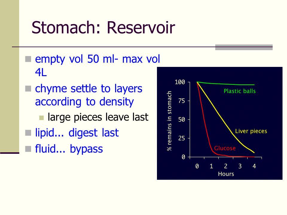 ถุงน้ำดี (Gall Bladder)และน้ำดี (Bile)  เก็บน้ำดีที่สร้างจากตับและทำให้น้ำดีเข้มข้น  น้ำดี  เกลือน้ำดี  Bile pigment (bilirubin)  Cholesterol  เกลือแร่  หน้าที่ของน้ำดี  ช่วยในการย่อยไขมัน  ช่วยในการดูดซึมไขมัน วิตามินที่ละลายในไขมัน โคเลสเตอรอล