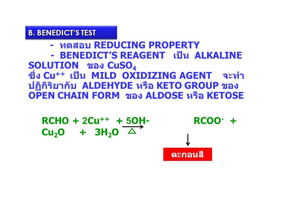 B. BENEDICT'S TEST - ทดสอบ REDUCING PROPERTY - BENEDICT'S REAGENT เป็น ALKALINE SOLUTION ของ CuSO 4 ซึ่ง Cu ++ เป็น MILD OXIDIZING AGENT จะทำ ปฏิกิริย