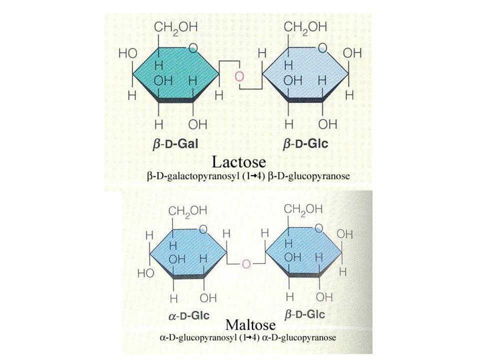 ให้นักศึกษาทำการทดลอง เพื่อพิสูจน์ว่าผู้ป่วยทั้งสอง มีน้ำตาลชนิดใดออกมาในปัสสาวะโดยใช้ reaction ต่างๆ และผลจาก paper chromatography