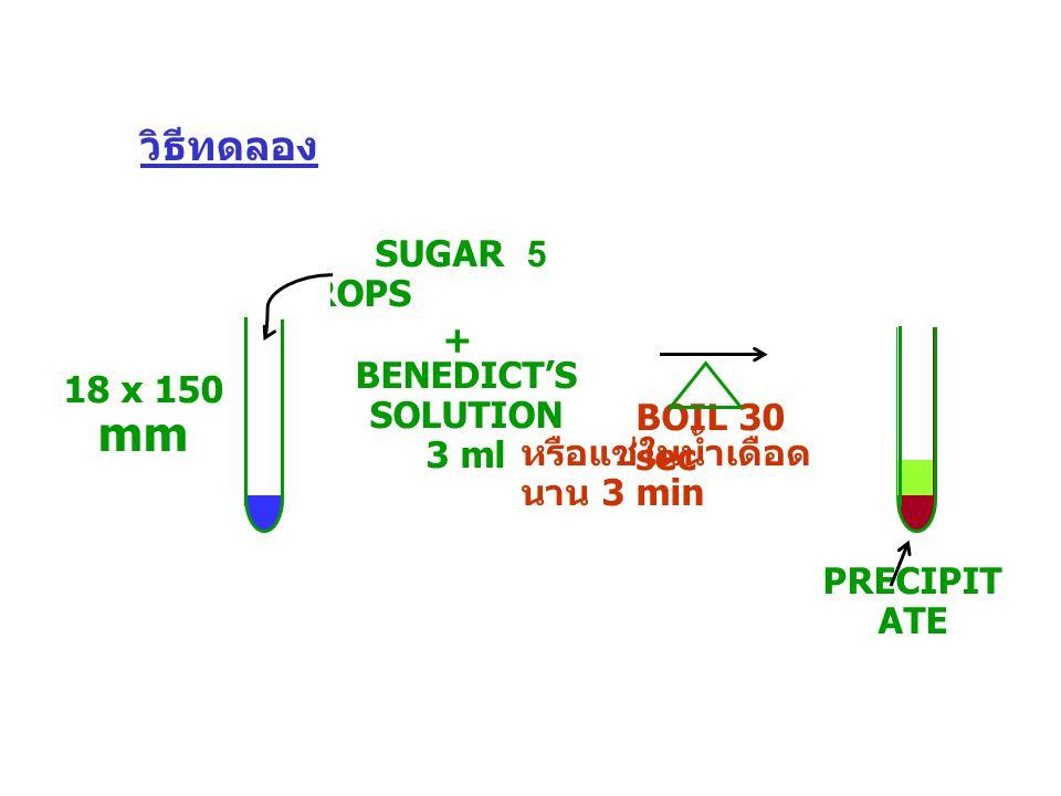 SUGAR 5 DROPS BENEDICT'S SOLUTION 3 ml + BOIL 30 sec PRECIPIT ATE หรือแช่ในน้ำเดือด นาน 3 min 18 x 150 mm วิธีทดลอง