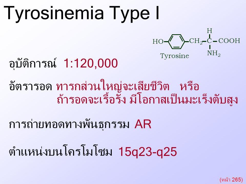 Tyrosinemia Type I อุบัติการณ์ 1:120,000 การถ่ายทอดทางพันธุกรรม ตำแหน่งบนโครโมโซม อัตรารอด Tyrosinemia Type I CH 2 C COOH H NH 2 HO Tyrosine ทารกส่วนใ