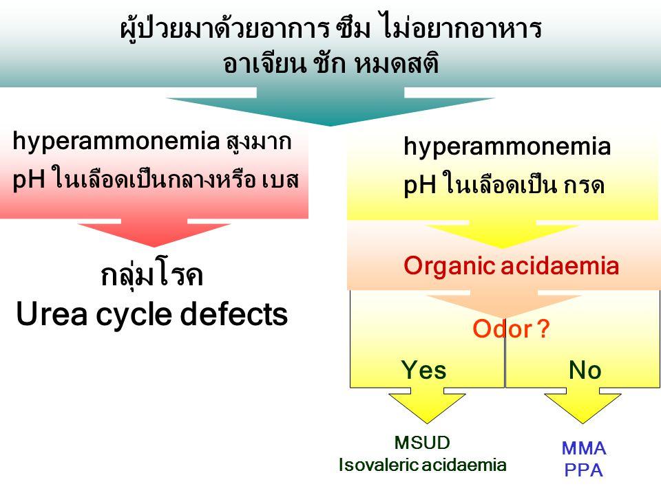 NoYes Organic acidaemia ผู้ป่วยมาด้วยอาการ ซึม ไม่อยากอาหาร อาเจียน ชัก หมดสติ hyperammonemia สูงมาก pH ในเลือดเป็นกลางหรือ เบส กลุ่มโรค Urea cycle de