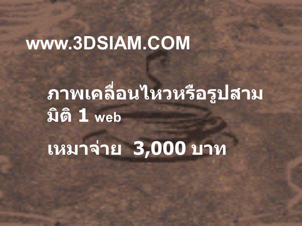 www.3DSIAM.COM ภาพเคลื่อนไหวหรือรูปสาม มิติ 1 web เหมาจ่าย 3,000 บาท