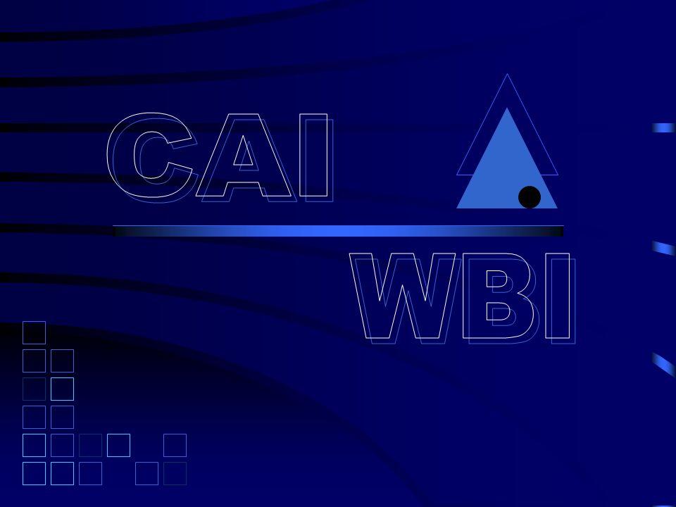 เครื่องมือที่ใช้จัดทำ WBI Multimedia 2.Sound Editing: Real jukebox (mp3) Realproducer (ram) 3.