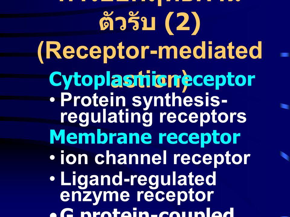 การออกฤทธิ์ผ่าน ตัวรับ (2) (Receptor-mediated action) Cytoplasmic receptor •Protein synthesis- regulating receptors Membrane receptor •ion channel receptor •Ligand-regulated enzyme receptor •G protein-coupled receptor