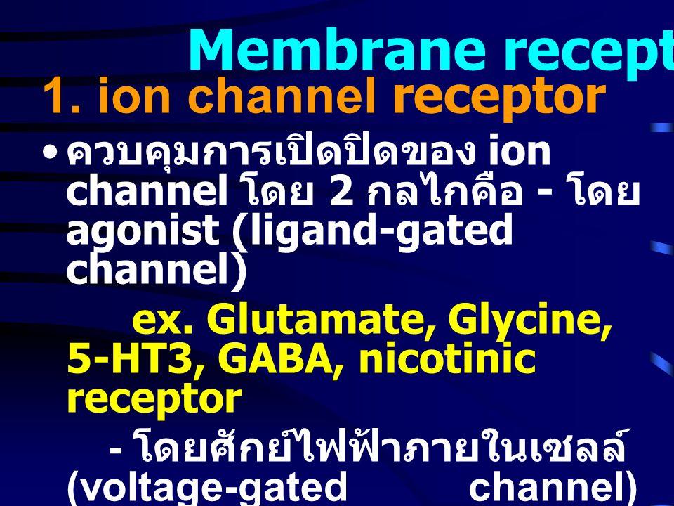 1. ion channel receptor • ควบคุมการเปิดปิดของ ion channel โดย 2 กลไกคือ - โดย agonist (ligand-gated channel) ex. Glutamate, Glycine, 5-HT3, GABA, nico