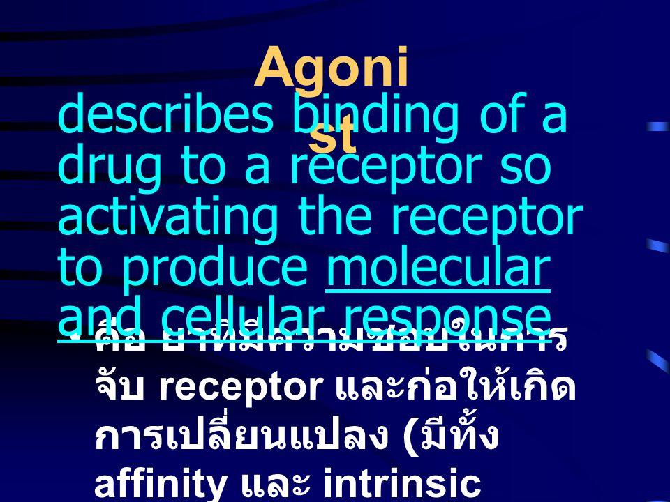 • คือ ยาที่มีความชอบในการ จับ receptor และก่อให้เกิด การเปลี่ยนแปลง ( มีทั้ง affinity และ intrinsic activity) Agoni st describes binding of a drug to a receptor so activating the receptor to produce molecular and cellular response