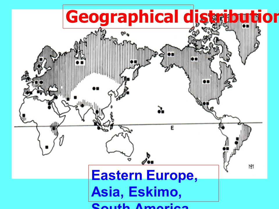 Geographical distribution Eastern Europe, Asia, Eskimo, South America, South Africa