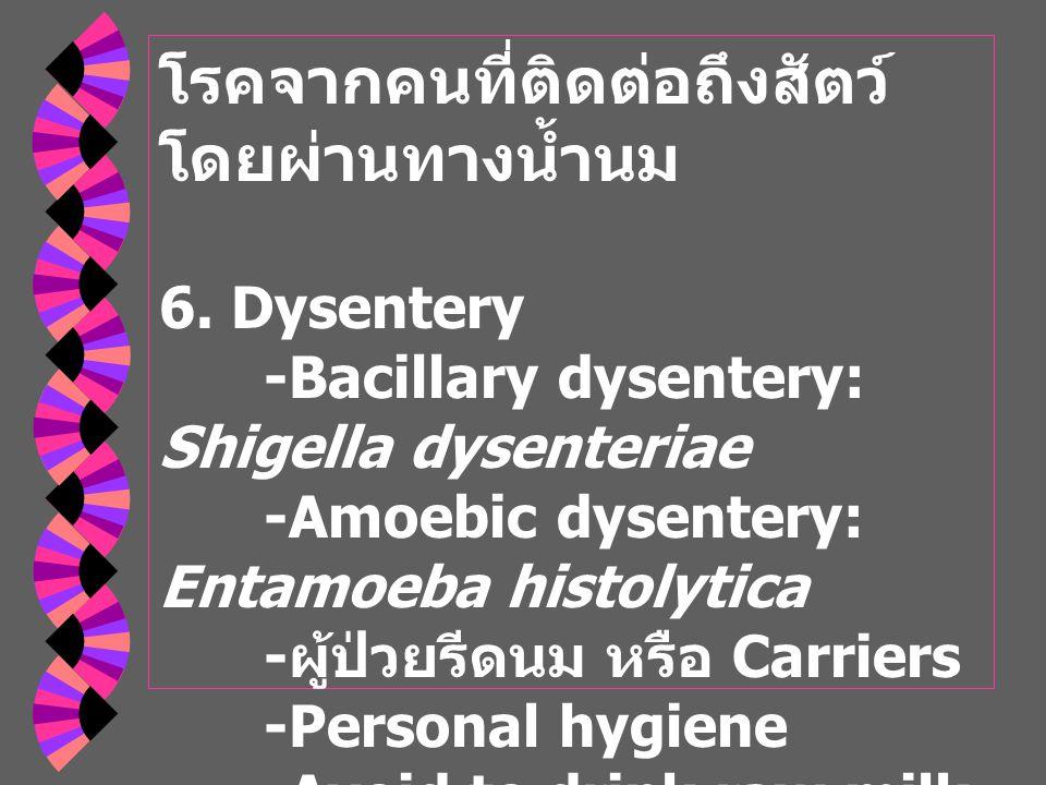 โรคจากคนที่ติดต่อถึงสัตว์ โดยผ่านทางน้ำนม 6.
