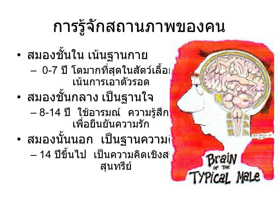 การรู้จักสถานภาพของคน • สมองชั้นใน เน้นฐานกาย – 0-7 ปี โตมากที่สุดในสัตว์เลื้อยคลาน เน้นการเอาตัวรอด • สมองชั้นกลาง เป็นฐานใจ –8-14 ปี ใช้อารมณ์ ความร