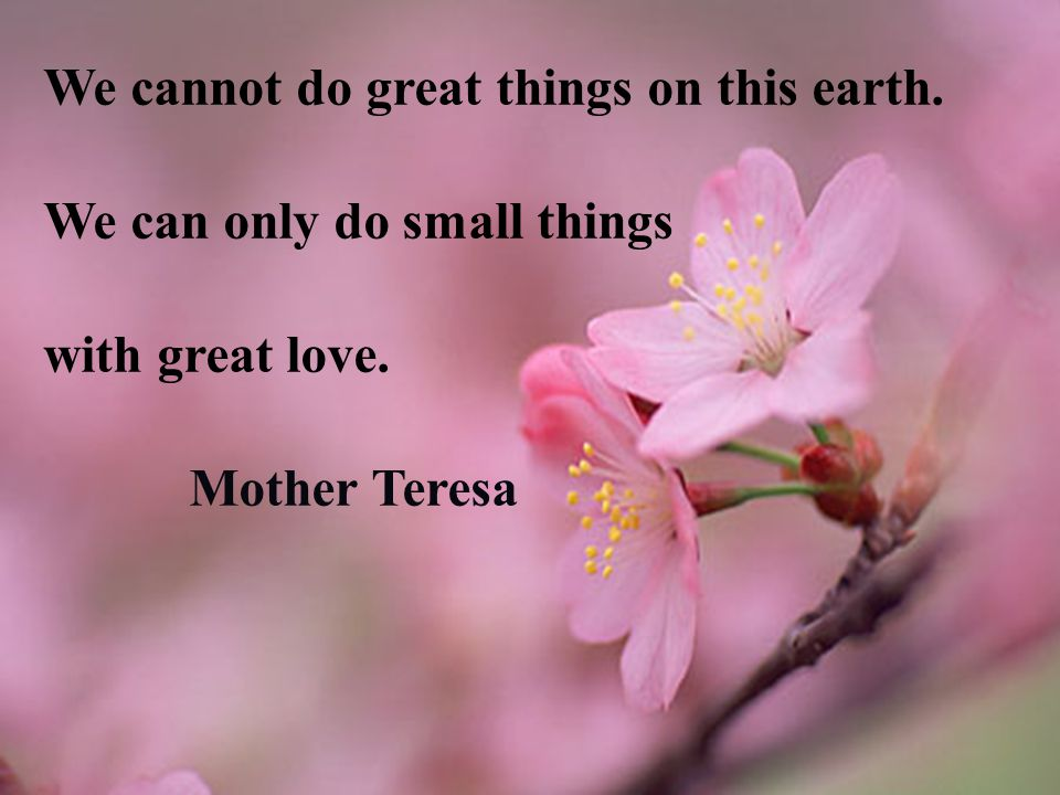We cannot do great things on this earth. We can only do small things with great love. Mother Teresa