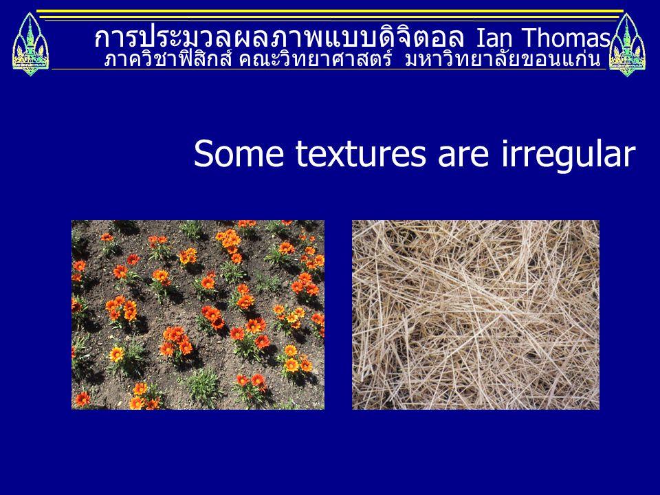การประมวลผลภาพแบบดิจิตอล Ian Thomas ภาควิชาฟิสิกส์ คณะวิทยาศาสตร์ มหาวิทยาลัยขอนแก่น Some textures are irregular