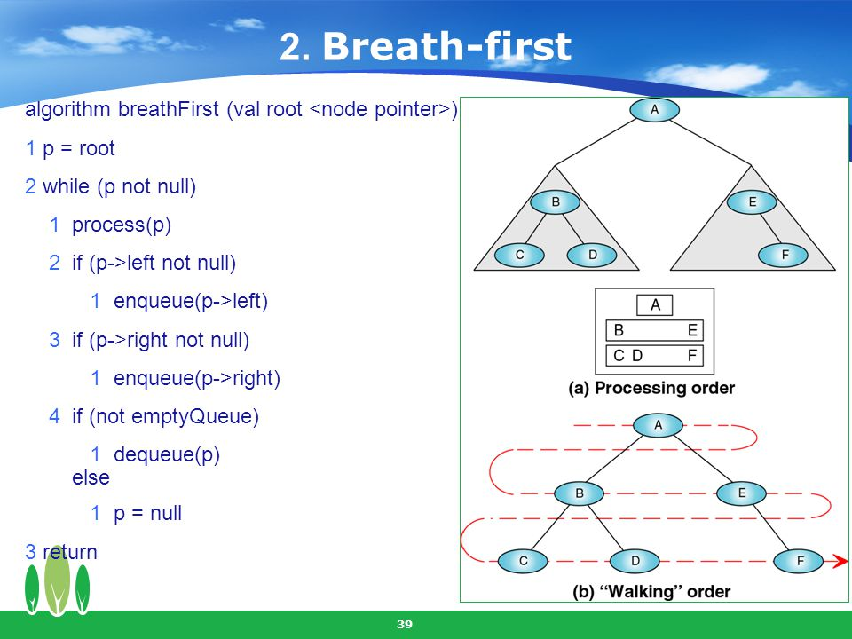 39 algorithm breathFirst (val root ) 1 p = root 2 while (p not null) 1 process(p) 2 if (p->left not null) 1 enqueue(p->left) 3 if (p->right not null)
