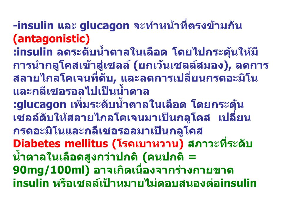-insulin และ glucagon จะทำหน้าที่ตรงข้ามกัน (antagonistic) :insulin ลดระดับน้ำตาลในเลือด โดยไปกระตุ้นให้มี การนำกลูโคสเข้าสู่เซลล์ ( ยกเว้นเซลล์สมอง ), ลดการ สลายไกลโคเจนที่ตับ, และลดการเปลี่ยนกรดอะมิโน และกลีเซอรอลไปเป็นน้ำตาล :glucagon เพิ่มระดับน้ำตาลในเลือด โดยกระตุ้น เซลล์ตับให้สลายไกลโคเจนมาเป็นกลูโคส เปลี่ยน กรดอะมิโนและกลีเซอรอลมาเป็นกลูโคส Diabetes mellitus ( โรคเบาหวาน ) สภาวะที่ระดับ น้ำตาลในเลือดสูงกว่าปกติ ( คนปกติ = 90mg/100ml) อาจเกิดเนื่องจากร่างกายขาด insulin หรือเซลล์เป้าหมายไม่ตอบสนองต่อ insulin