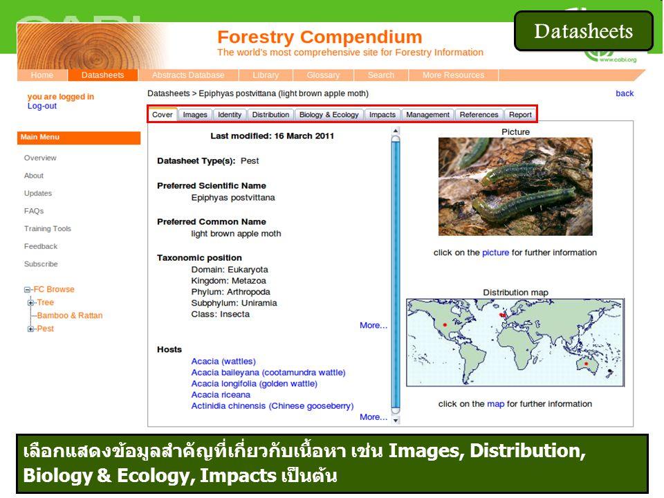 Datasheets เลือกแสดงข้อมูลสำคัญที่เกี่ยวกับเนื้อหา เช่น Images, Distribution, Biology & Ecology, Impacts เป็นต้น