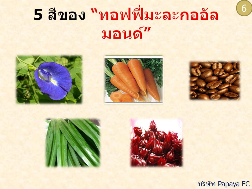  เนื้อละเอียด เนียน คงรูป  สีตามธรรมชาติ สม่ำเสมอ  กลิ่นรสตามธรรมชาติ  ไม่พบสิ่งแปลกปลอม  ความชื้น ไม่เกินร้อยละ 8 โดย น้ำหนัก 7 บริษัท Papaya FC จำกัด