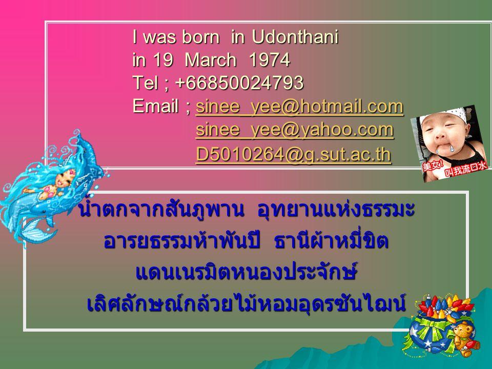 I was born in Udonthani in 19 March 1974 Tel ; +66850024793 Email ; sinee_yee@hotmail.com sinee_yee@yahoo.com D5010264@g.sut.ac.th sinee_yee@hotmail.comsinee_yee@yahoo.comD5010264@g.sut.ac.thsinee_yee@hotmail.comsinee_yee@yahoo.comD5010264@g.sut.ac.th น้ำตกจากสันภูพาน อุทยานแห่งธรรมะ อารยธรรมห้าพันปี ธานีผ้าหมี่ขิต แดนเนรมิตหนองประจักษ์เลิศลักษณ์กล้วยไม้หอมอุดรซันไฌน์