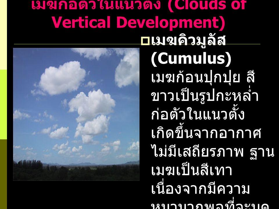  เมฆคิวมูโลนิมบัส (Cumulonimbus) เมฆก่อตัวในแนวตั้ง พัฒนามาจากเมฆ คิวมูลัส มีขนาดใหญ่ มากปกคลุมพื้นที่ ครอบคลุมทั้งจังหวัด ทำให้เกิดพายุฝนฟ้า คะนอง หากกระแสลม ชั้นบนพัดแรง ก็จะทำ ให้ยอดเมฆรูปกะหล่ำ กลายเป็นรูปทั่งตีเหล็ก ต่อยอดออกมาเป็น เมฆเซอโรสเตรตัส หรือเมฆเซอรัส
