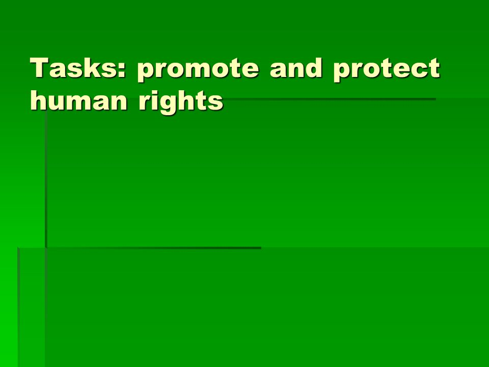 Tasks: promote and protect human rights