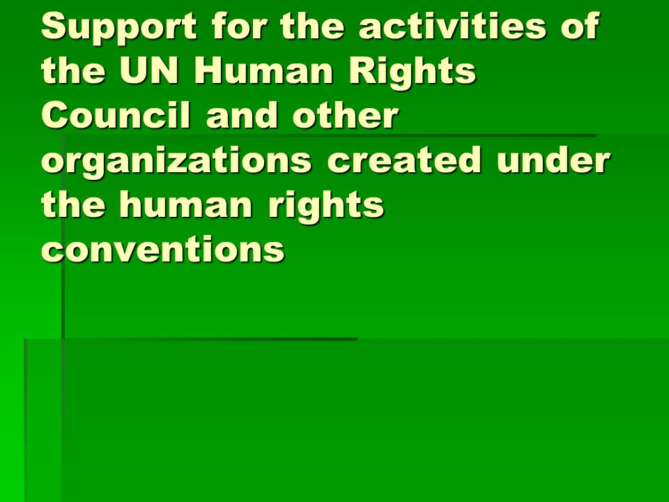 Support for the activities of the UN Human Rights Council and other organizations created under the human rights conventions